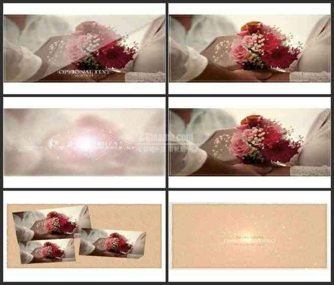 AE2533-优雅的婚礼相册 图文展示