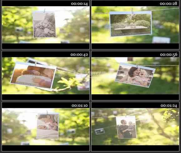 AE1405 阳光明媚的果园相片晾衣绳 相册