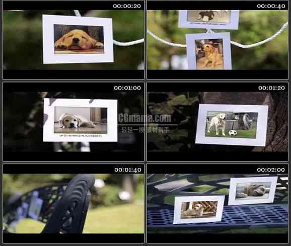 AE1459 秋季公园河边相片展示 相册