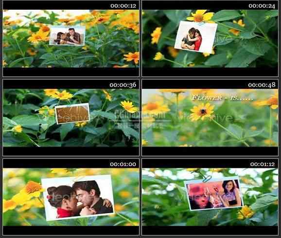 AE1478 花丛中婚庆相片展示 相册