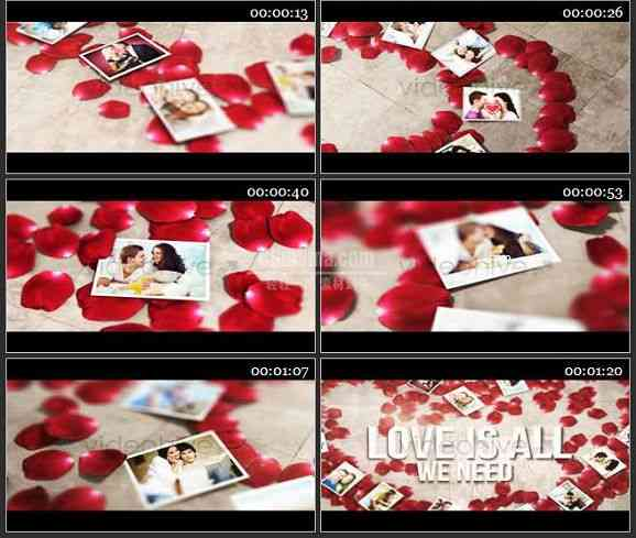 AE1673 玫瑰花瓣装饰婚庆模板 相册