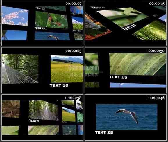 AE1818-优雅的视频墙动画图文展示