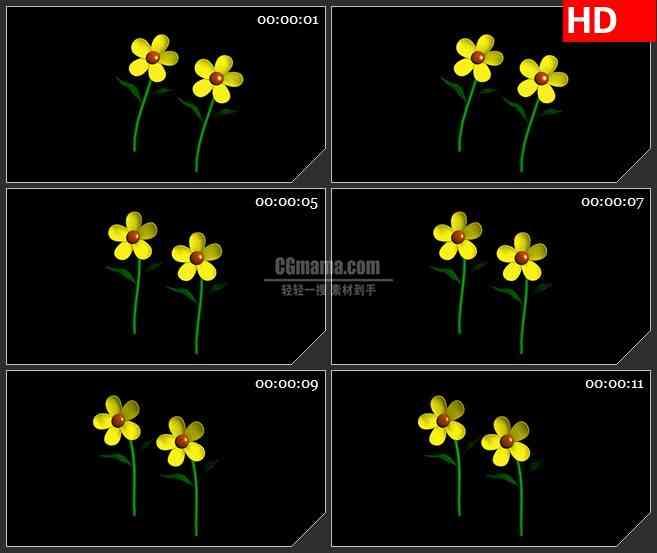 BG1013-扭动摇摆的太阳花花朵高清led大屏视频背景素材