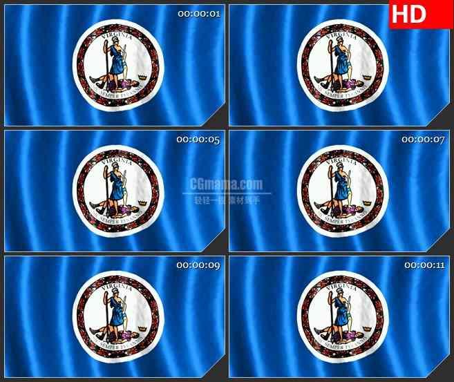 BG1145-弗吉尼亚州三维动画旗帜飘动高清视频素材