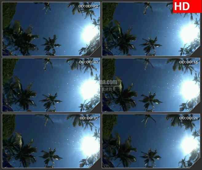 BG1506水中的倒影热带树木棕榈树led背景大屏高清视频素材
