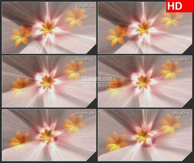 bg1936旋转的黄色百合花动态led高清视频背景素材