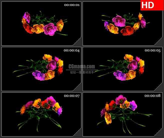 BG1955旋转的玫瑰花素特效合成透明视频素材