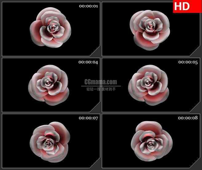BG1956旋转的美丽花朵透明高清合成特效视频素材