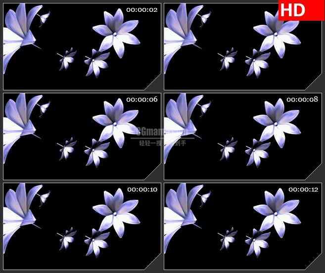 BG1972旋转飞来飞去的紫色花朵高清特效合成透明视频素材