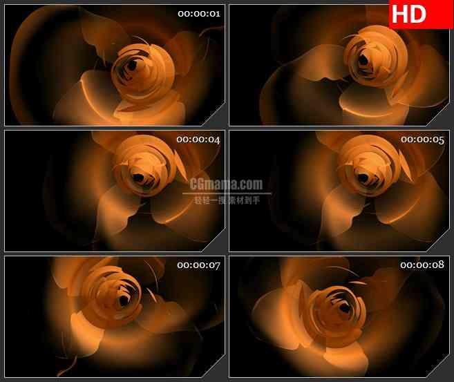 BG2040橙红色玫瑰花朵绽放黑色背景动态LED高清视频背景素材