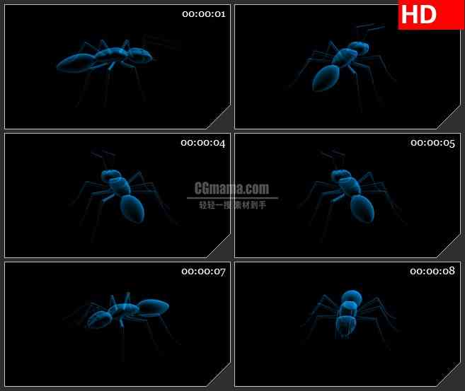 BG2429蓝色透明蚂蚁旋转高清led大屏视频背景素材