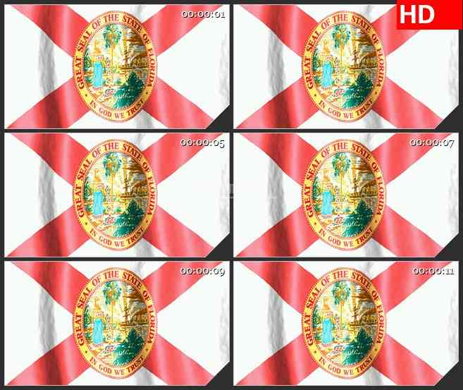 BG2624佛罗里达州旗帜飘动高清led大屏视频背景素材