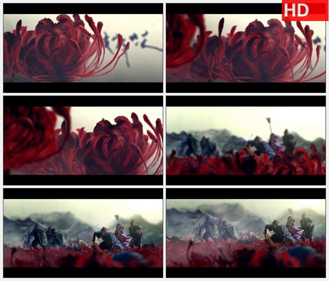ZY1252彼岸花曼陀罗花古代战争死亡高清水墨动画视频素材