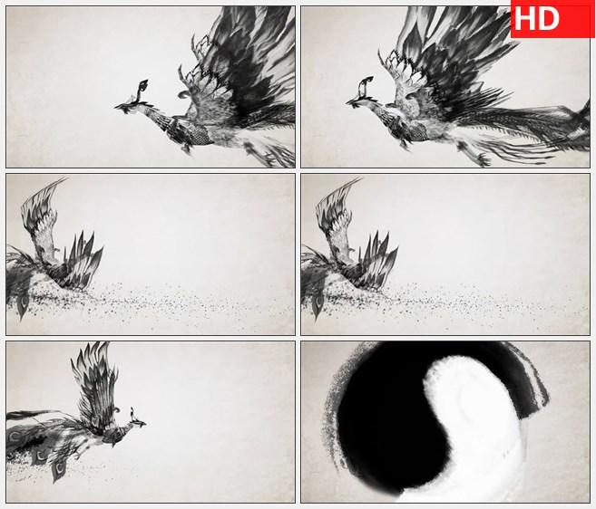 zy1410水墨凤凰太极图案高清动画视频素材