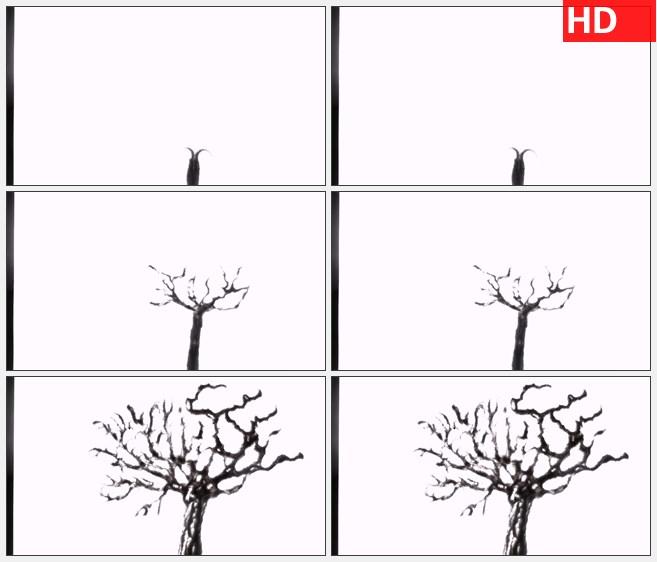 ZY1445水墨生长动画大树生长高清特效视频素材