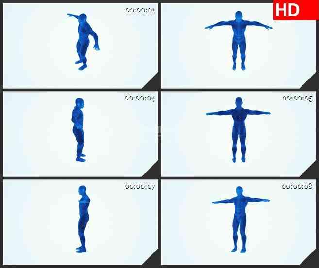 BG3091医学类 蓝色三维人体模型的旋转高清led大屏视频背景素材