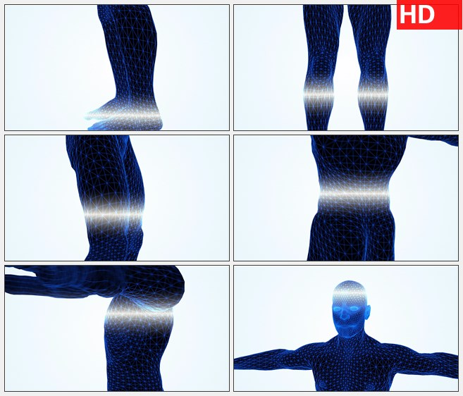 ZY1554从底部向上扫描三维模型人体解剖旋转高清实拍视频素材