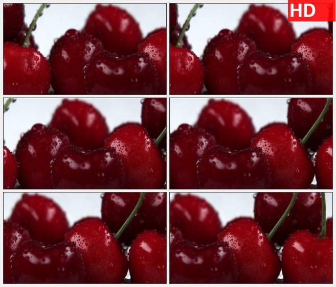 ZY1574对挂着露水的红樱桃的特写镜头从左到右缓慢移动高清实拍视频素材