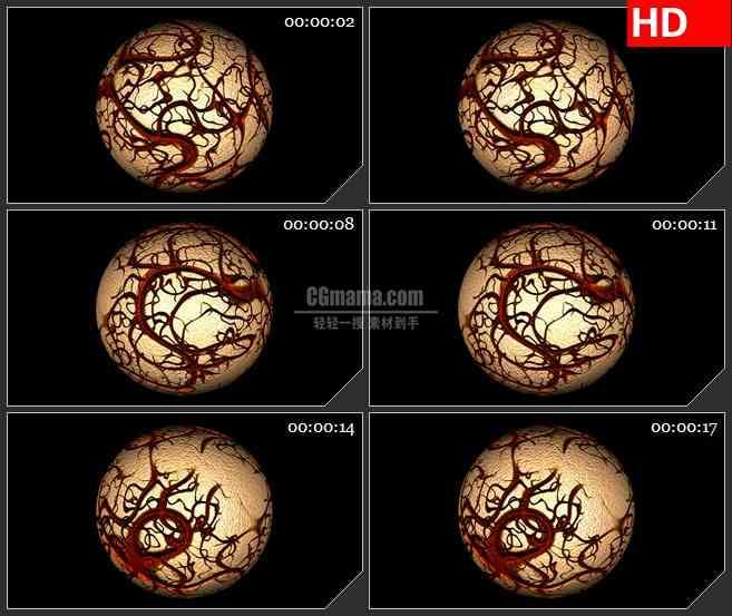 BG3482暗红色血管包裹细胞球黑色背景led大屏背景高清视频素材