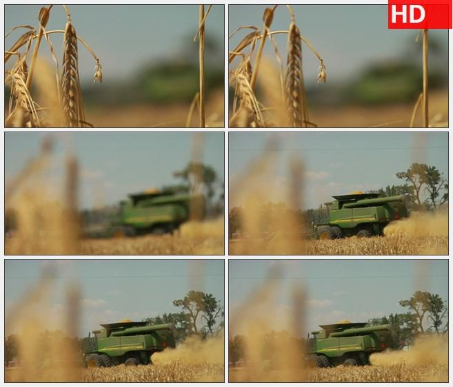 ZY1774小麦秸秆结合机架调焦高清实拍视频素材