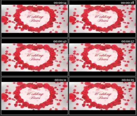 AE2209-唯美玫瑰花装饰婚礼视频相册