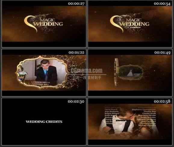AE2302-神奇的婚礼 视频图片展示