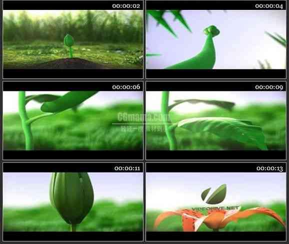 AE2362-植物生长开花3D动画 LOGO展示