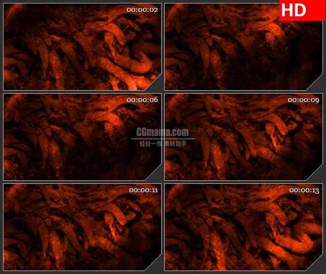 BG4600红辣椒纹理大理石粗糙红色光影动态背景led大屏背景高清视频素材